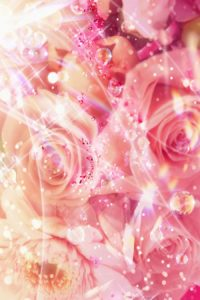 296-desktop-red-flower-backgrounds-video-sony-1600x900