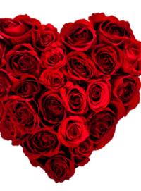 Sbraga-Valentines-Day