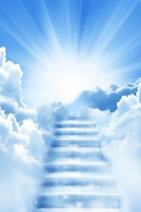 background-pictures-for-funeral-programs-6
