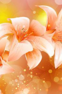 orange-flowers-background