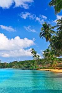 tropical-beach-hd1-1